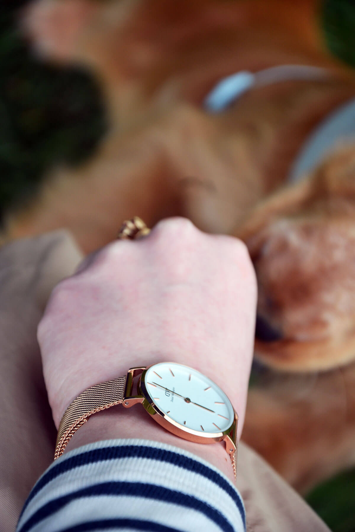 Edita in Sinequanone, Lindex, Daniel Wellington, Hunter 6